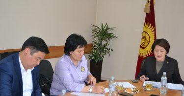 Рабочая подгруппа обсудила ключевые направления Стратегии развития избирательного законодательства КР