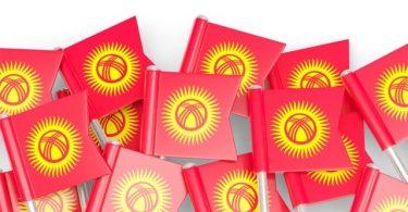 Саясий партияларды мамлекеттик каржылоо жана мониторинг жүргүзүү
