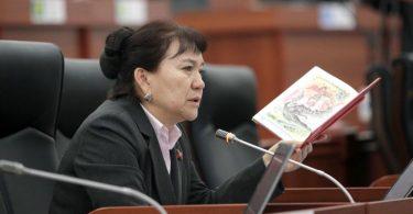Алтыбаева: На проведение досрочных выборов в бюджете нет денег