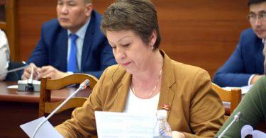 Депутат Евгения Строкова будет голосовать за скандальную поправку в закон об НКО
