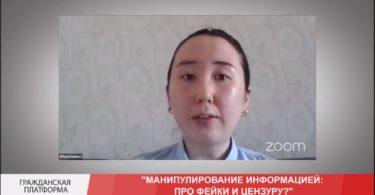Мнение юриста Алтынай Исаевой по законопроекту «О манипулировании информацией»